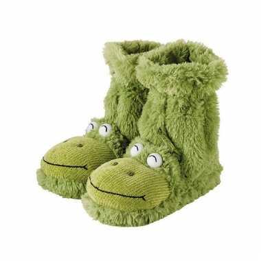Pantoffel sokken kikker